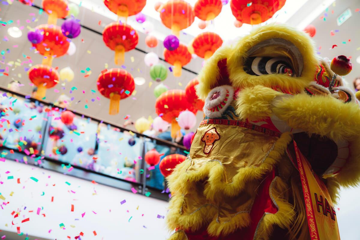 Dragon Dance - Lunar New Year